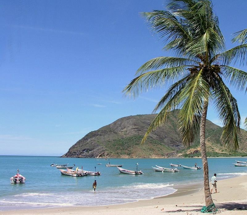 Veneti in Venezuela - spiaggia e palme in Venezuela