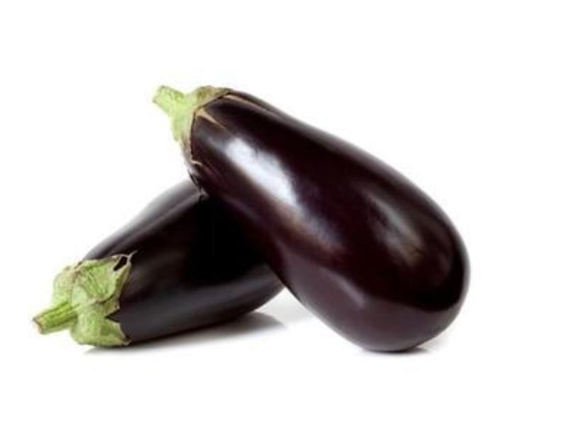 Aubergine Sharapova Seeds 28bottle Brinjal 29 500x500