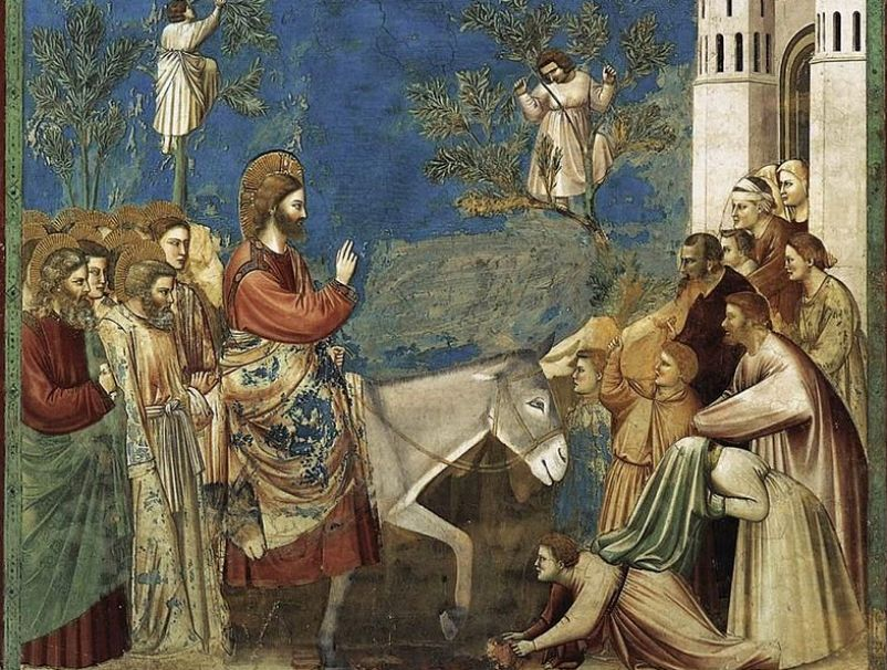 Ingresso A Gerusalemme Giotto