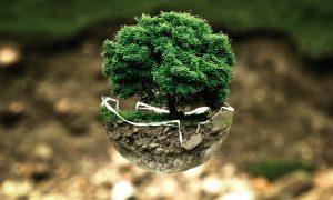 Questione Ecologica