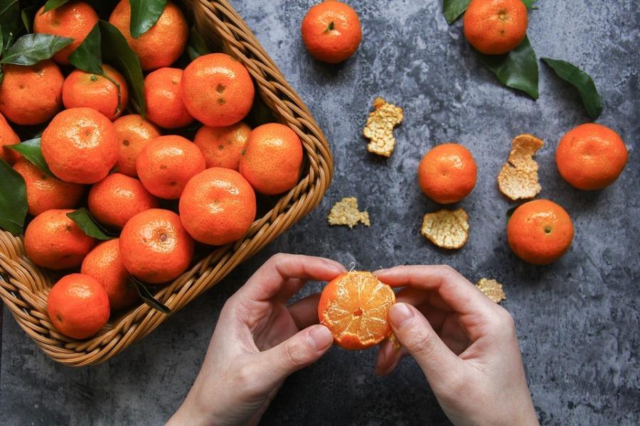 Frutta Dell'inverno