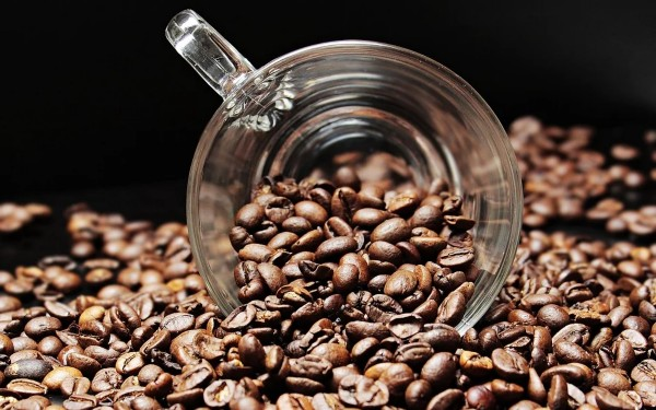 tiramisù Caffè Arabico