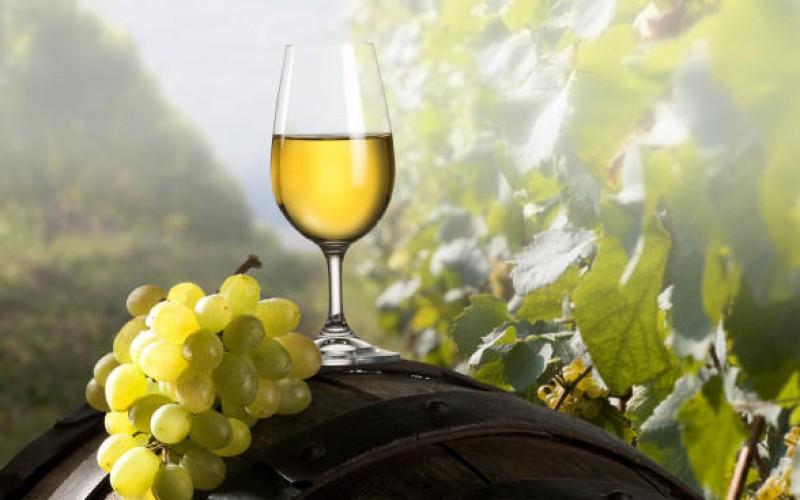 La passerina del frusinate- calice di vino