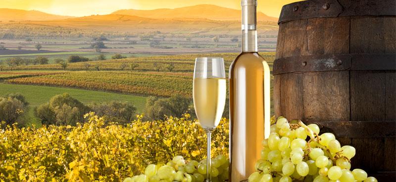 Vino Bianco Bio