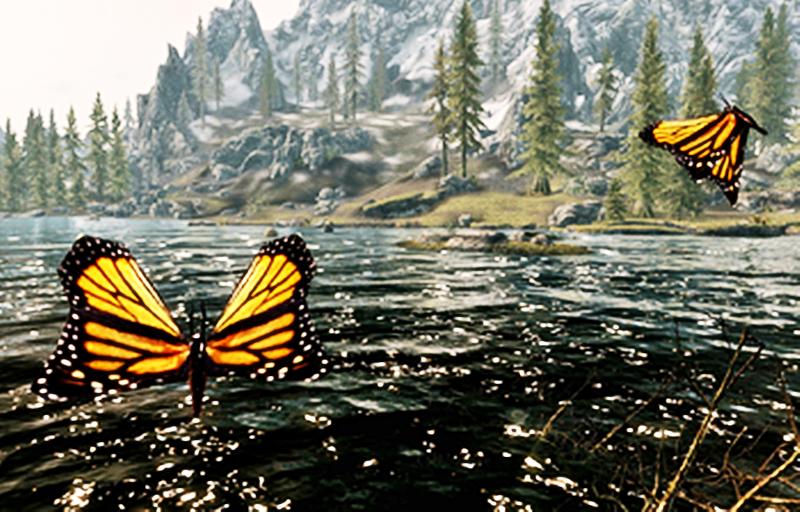 Federica la ragazza del lago - Farfalla Monarca nei laghi del Canada
