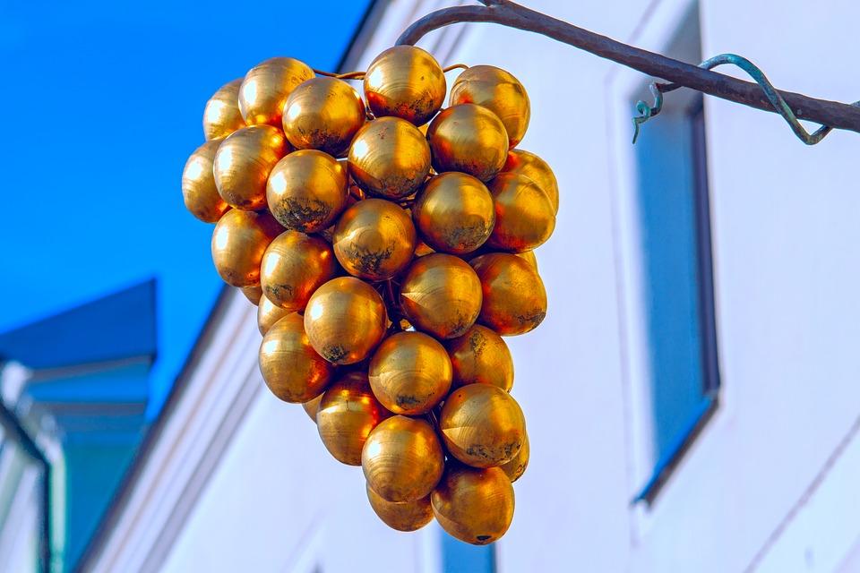 Uva Cimiciara - foto di grappolo d'uva decorativo