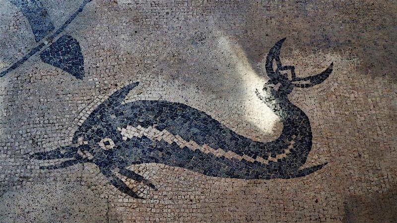 terme di Supino - Delfino in un mosaico
