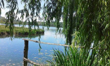 Il Lago Di Posta Fibreno - veduta del lago