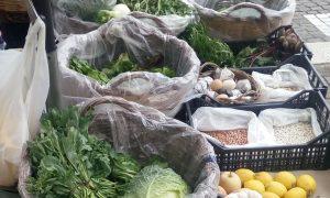 la cicoria - Mercatino Delle Verdure
