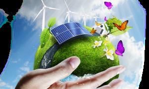 Domeniche ecologiche a Frosinone - Pannelli Solari