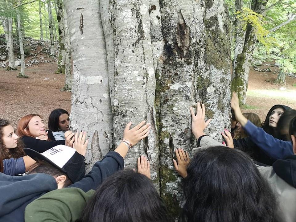 Damiano Tullio - Trekking attorno a un albero