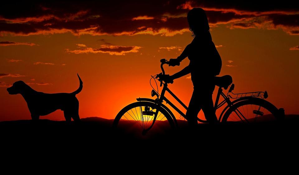 Spazi urbani - Cane E Ragazza al tramonto