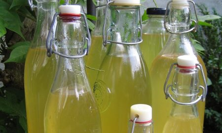 liquori fatti in casa - liquore di Limoncino