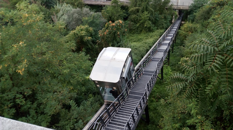 Alberi a Frosinone - ascensore in movimento