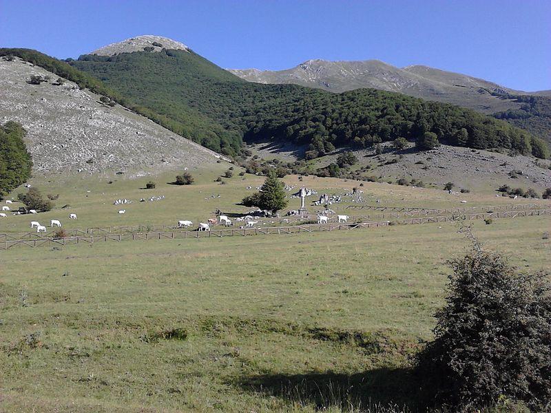 Prato Di Campoli - immagine del pianoro