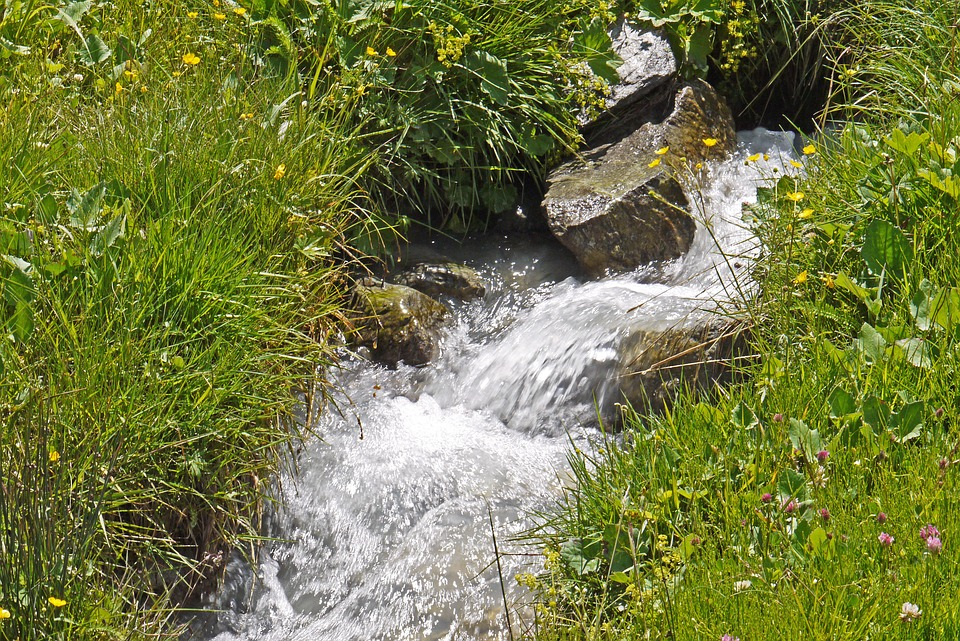 Le sorgenti del Cosa - Sorgente e ruscello