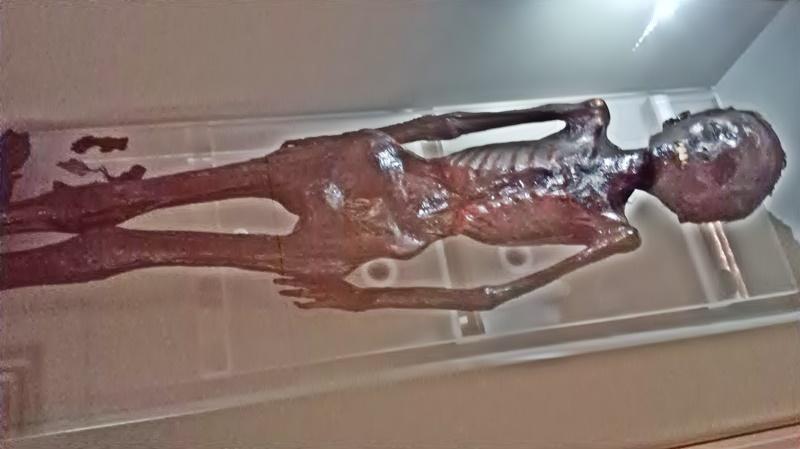 soggetto caucasico - mummia rinvenuta a Grotta Rossa
