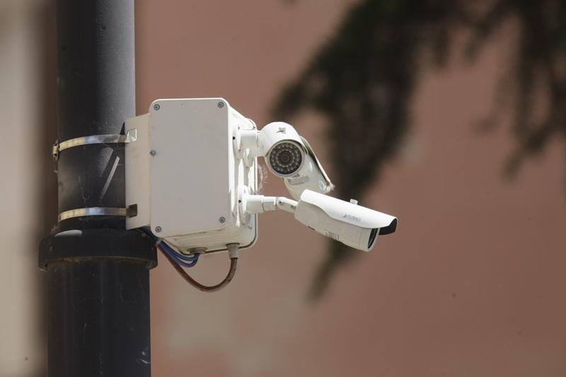 abbattimento retta del nido - Camera Bianca di videosorveglianza