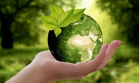 Raccolta differenziata personalizzata - Natura Terra e una mano che la tiene