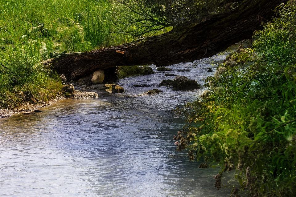 Acqua puzza di Ferentino - Acque sulfuree