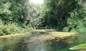 Il Fiume Fibreno - immagine del fiume