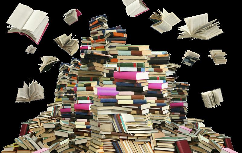 Ampliamento del sistema bibliotecario a Frosinone - Montagna Di Libri che volano