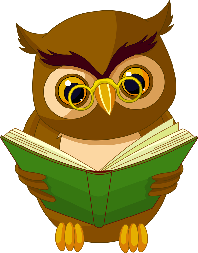 Nuove borse di studio a Frosinone - Gufo Con Libro che legge