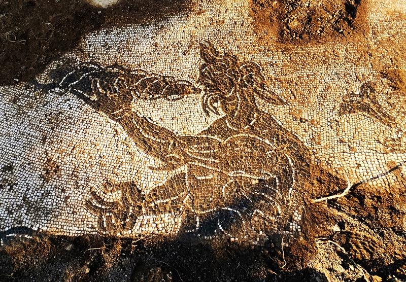 Schioppo monumento naturale - Mosaico di Suonatore Di Corno