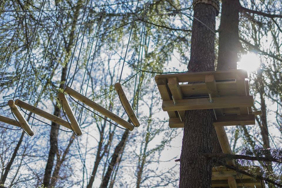 Parco Avventura Struttura in legno tra gli alberi