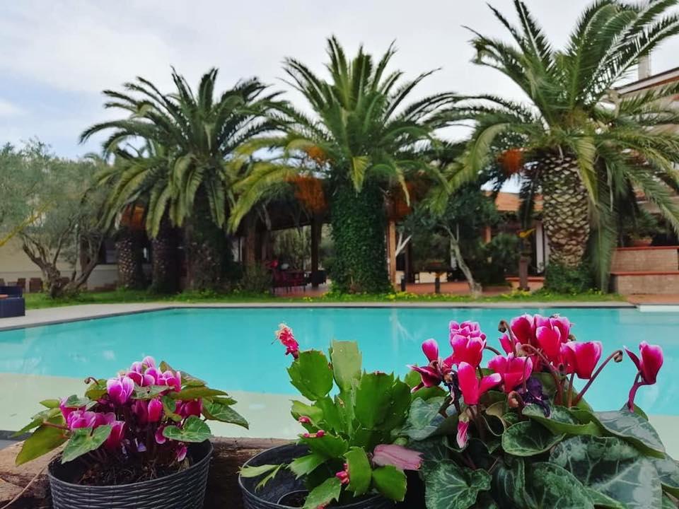 la piscina dell'Agriturismo Costantino