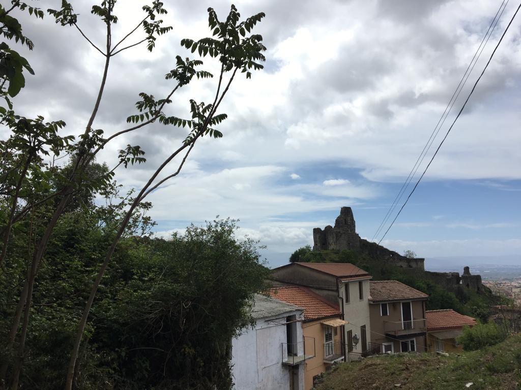 veduta del castello con albero sulla sinistra