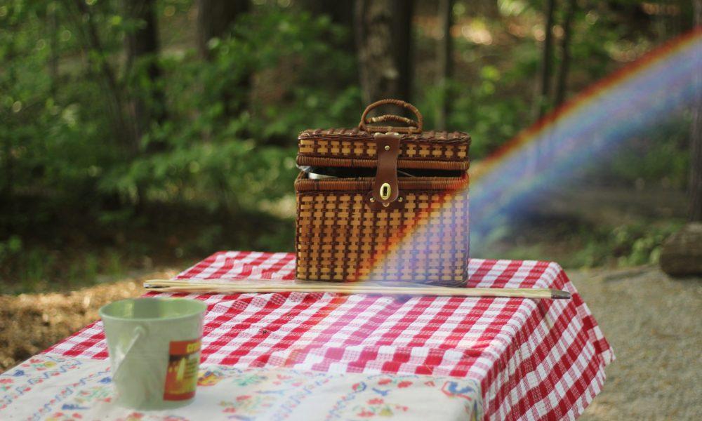 tavolo da picnic con tovaglia a quadri rossa e cestino portapranzo