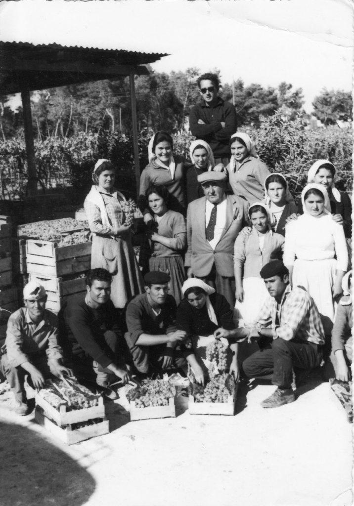 Vendemmia di un Tempo con un gruppo di contadini lametini in una foto in bianco e nero