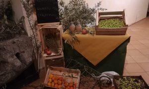 Oro Oliva Ceste di olive