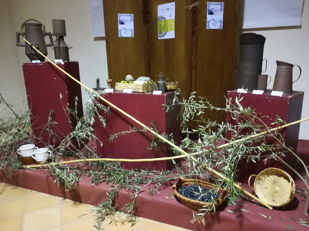 l'allestimento scenico realizzato al museo con le olive