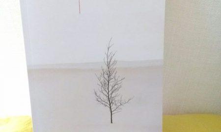 Come Neve Libro