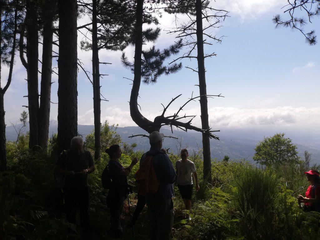 Partecipanti Al Trekking Che Osservano Il Panorama