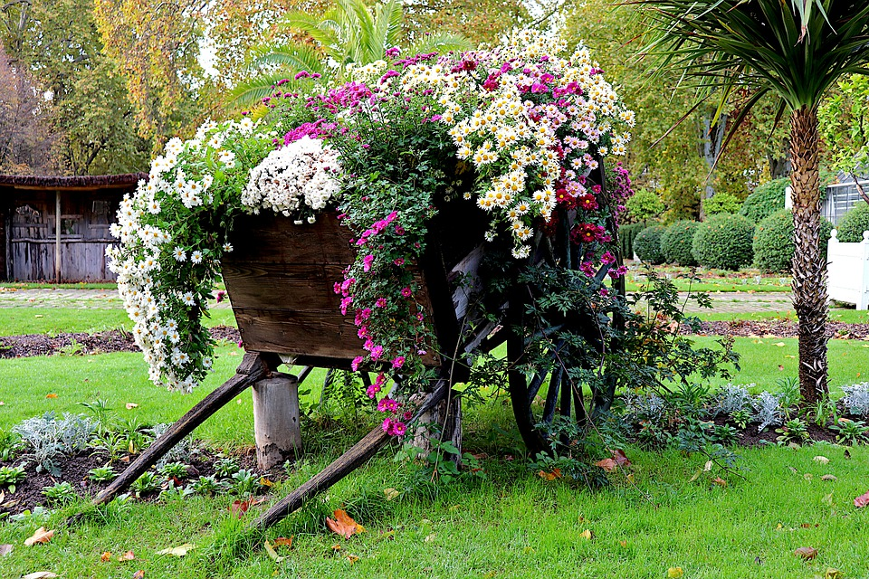 Giardinaggio lameziainfiore