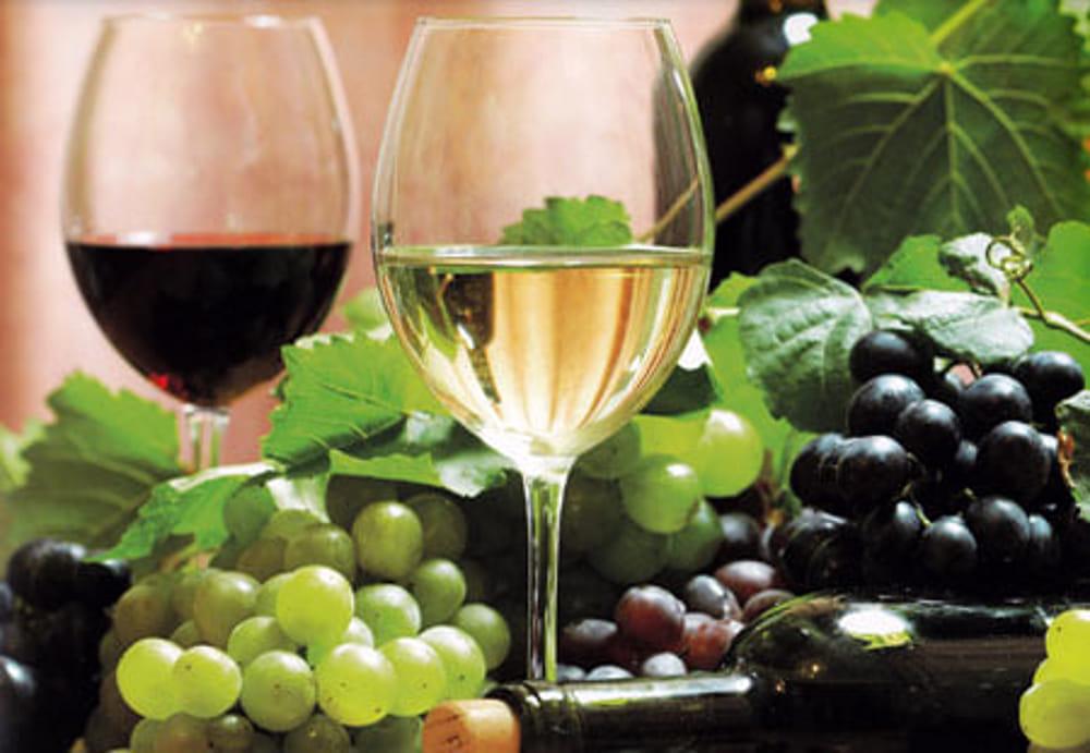 il vino di Lanuvio