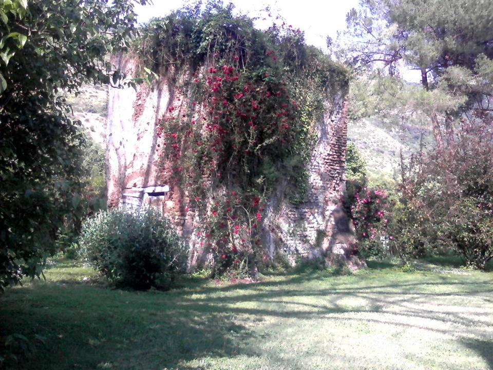 i giardini di Ninfa - Rovine con fiori rampicanti