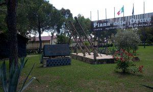 museo delle orme di Piana - Museo 1