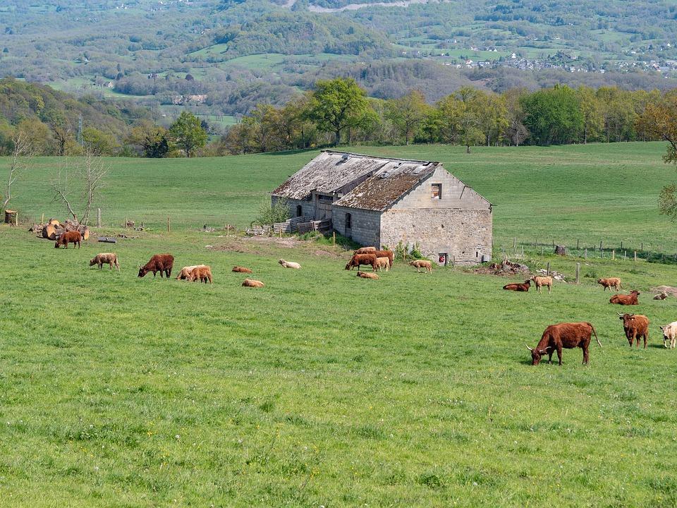lab - Azienda Agricola dell'agro pontino