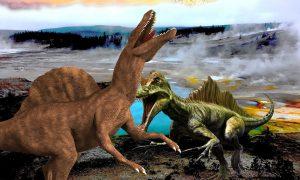 Dinosauria - Dinosauri stilizzati