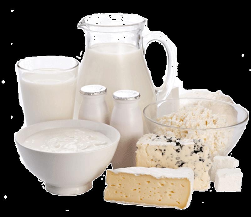 lievito - Yogurt e formaggi