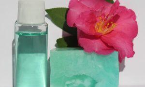Gel igienizzante facile - Igienizzante Fatto In Casa