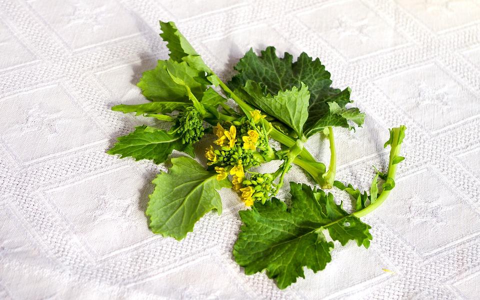Sezze  - Broccoletti setini