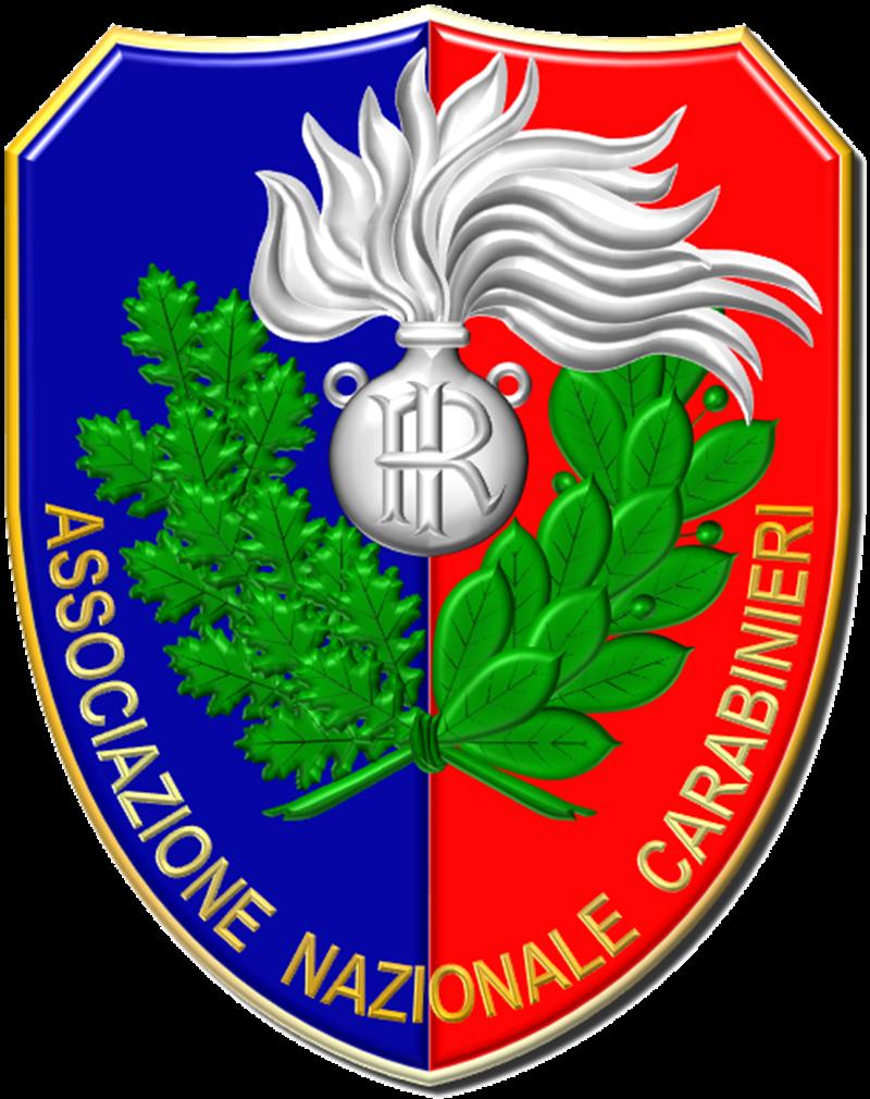 Vittorio Iacovacci - simbolo dell'Arma