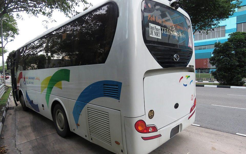 Bus turistici - Bus utili a Latina