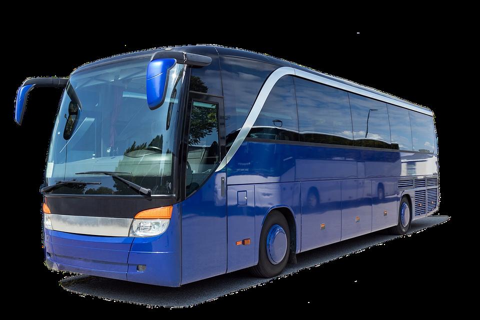 Bus turistici - Bus Latina per fare da scuolabus