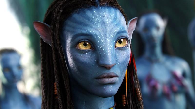 avvistare la lucertola blu - foto di avatar